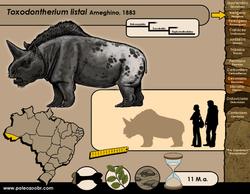 Toxodontherium listai