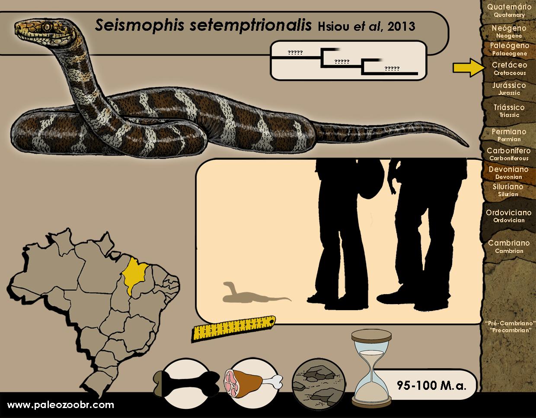Seismophis setemptrionalis