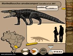 Montealtosuchus arrudacamposi
