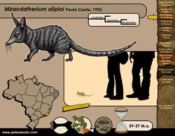 Mirandatherium alipioi