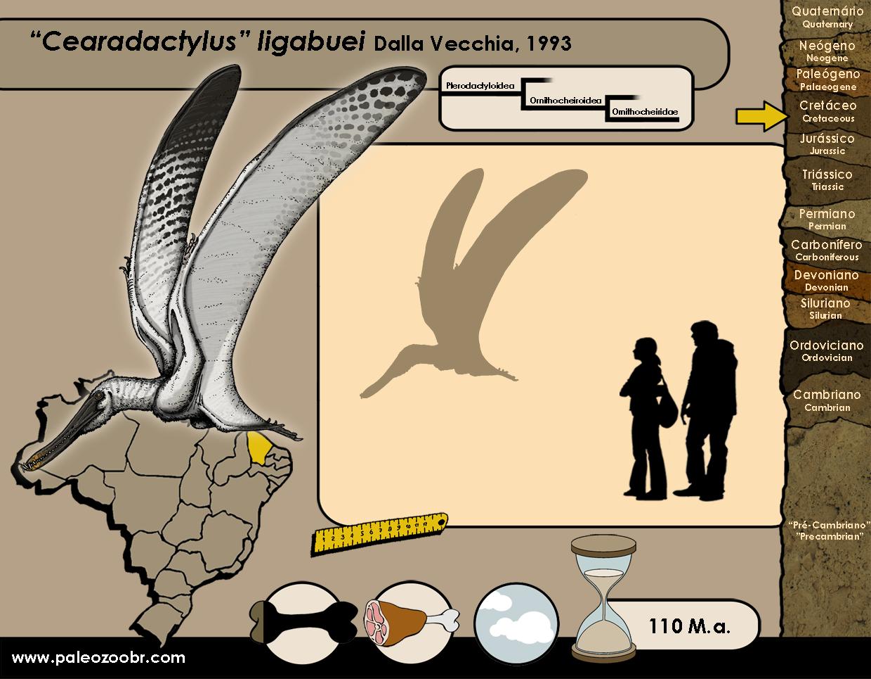 Cearadactylus ligabuei
