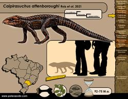 Caipirasuchus attemboroughi