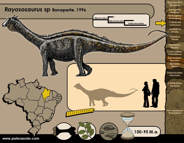 Rayososaurus sp