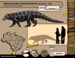 Aetosauroides inhamandensis