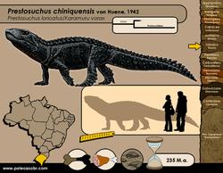 Prestosuchus chiniquensis