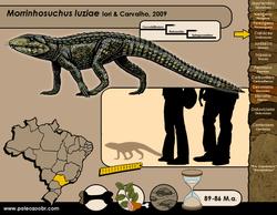 Morrinhosuchus luiziae