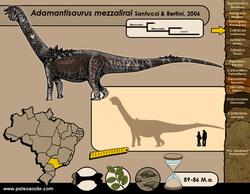 Adamantisaurus mezzalirai