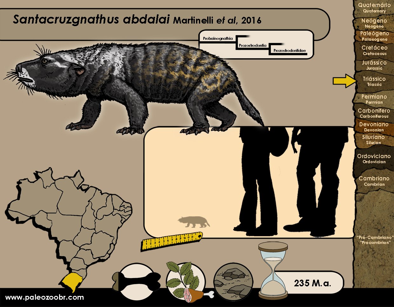 Santacruzgnathus abdalai