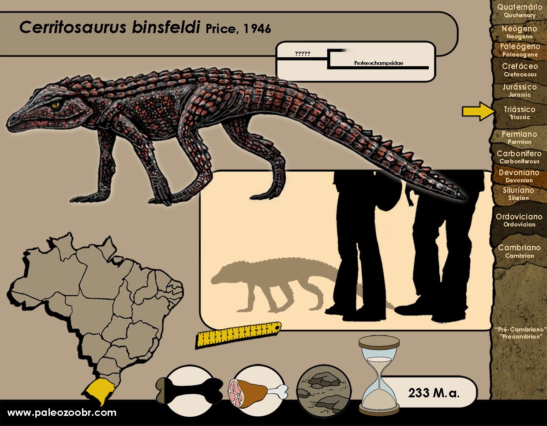 Cerritosaurus binsfeldi