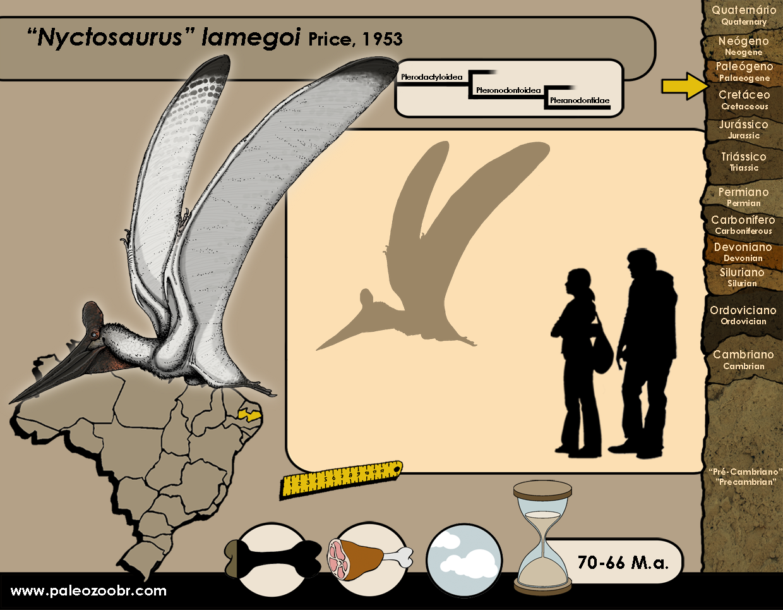 Nyctosaurus lamegoi