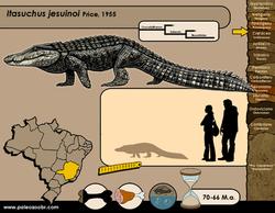 Itasuchus jesuinoi