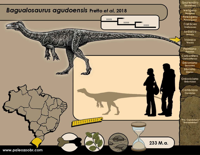 Bagualosaurus agudoensis