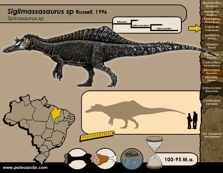 Sigilmassasaurus sp