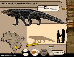 Baurusuchus pachecoi