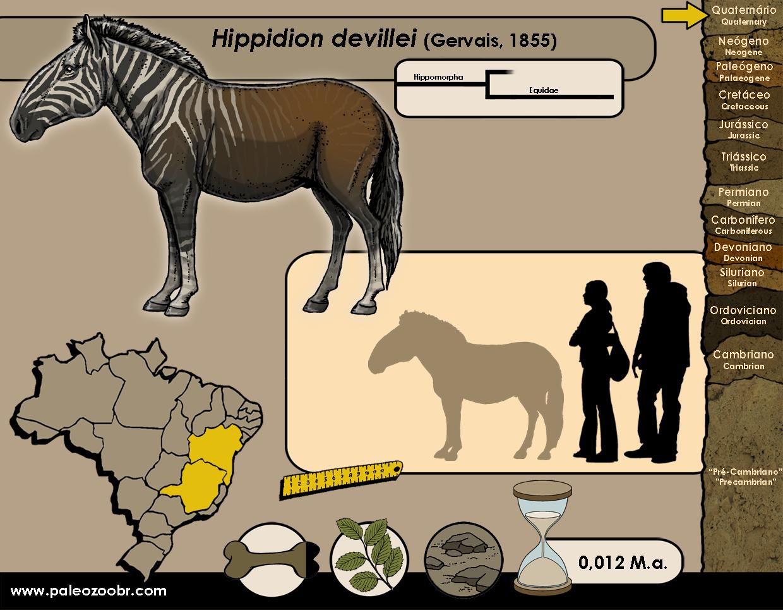 Hippidion devillei