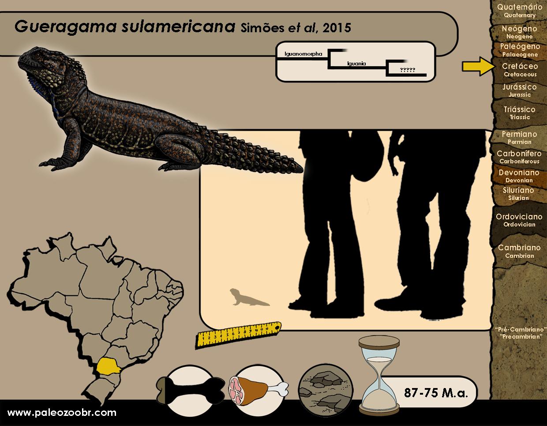 Gueragama sulamericana