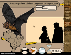Amazonycteris divinus
