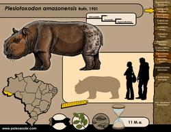 Plesiotoxodon amazonensis