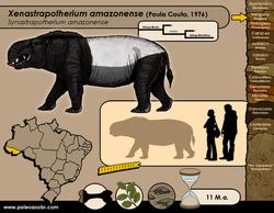 Xenastrapotherium amazonense