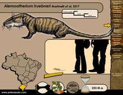 Alemoatherium huebneri
