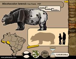 Mixotoxodon larensis