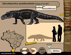 Decuriasuchus quartacolonia