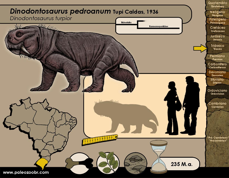 Dinodontosaurus pedroanum