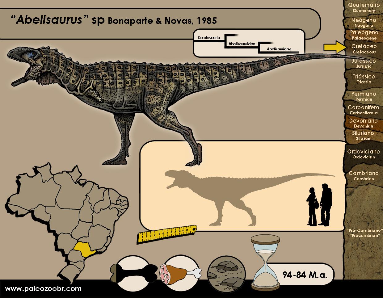 Abelisaurus sp