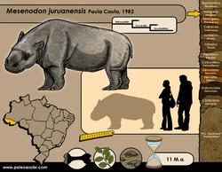 Mesenodon juruanensis