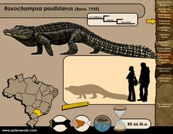 Roxochampsa paulistanus