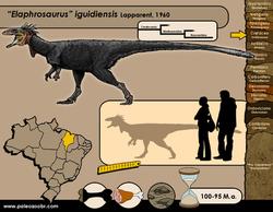 Elaphrosaurus iguidiensis