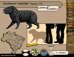 Kiyutherium orientalis