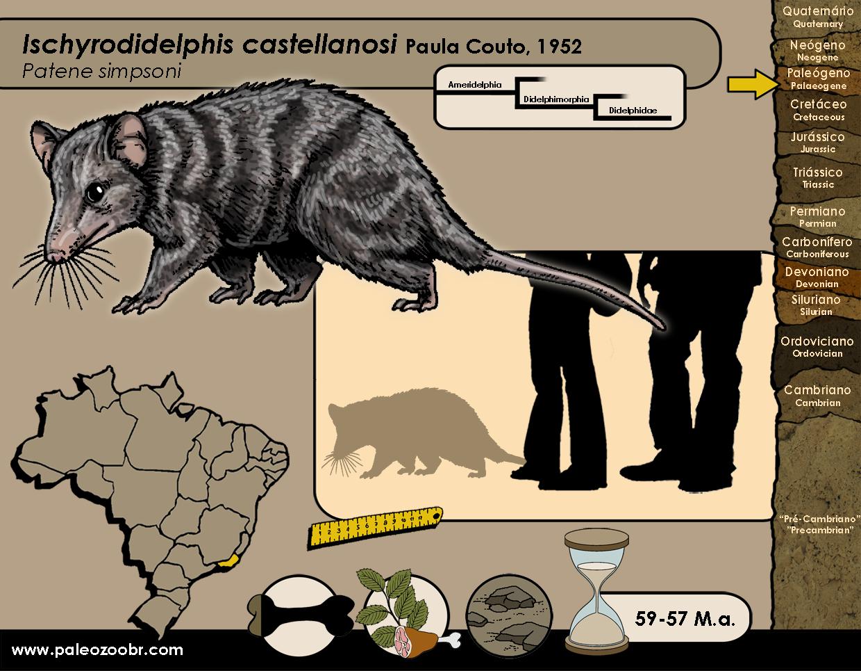 Ischyrodidelphis castellanosi