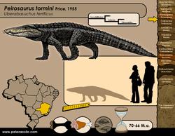 Peirosaurus tormini