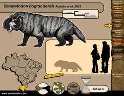 Exaeretodon riograndensis