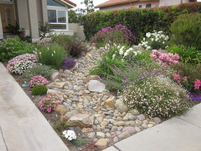 Drought Tolerant Landscaping in San Diego County