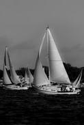 BNW Sailing.jpg