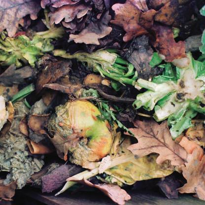 Compost/Apple III