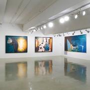 Installation view, Herter Gallery, 2007