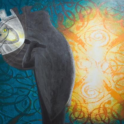 Brynteg Lights/The Trickster (The Mari Lwyd)