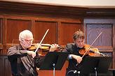 violin-543363.jpg