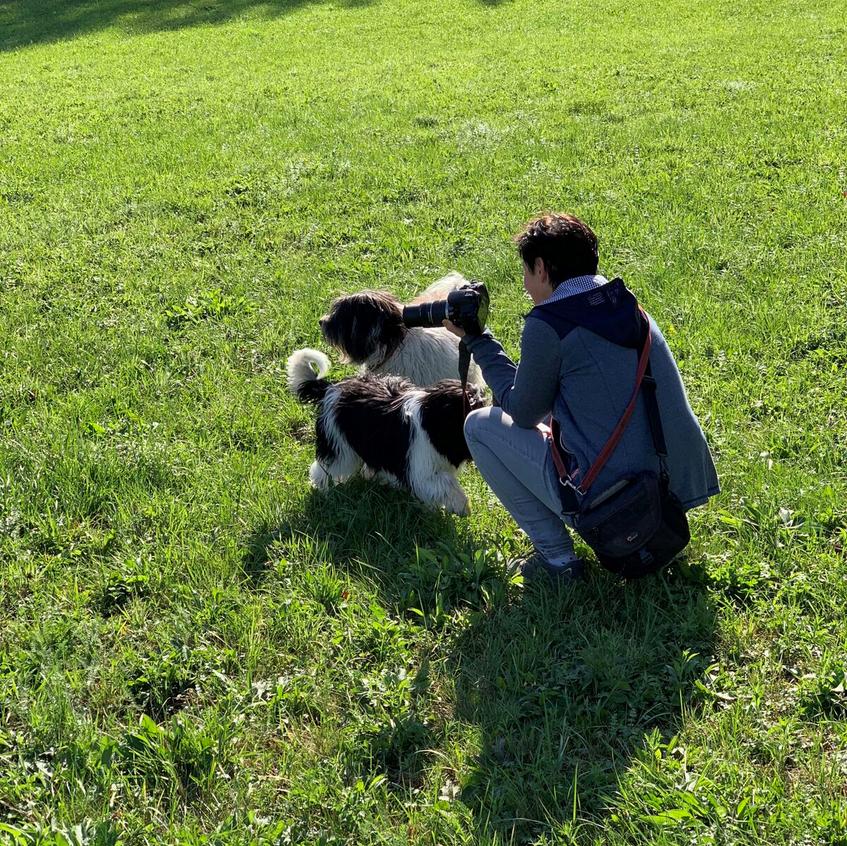Welpentreffen im Donauparadies