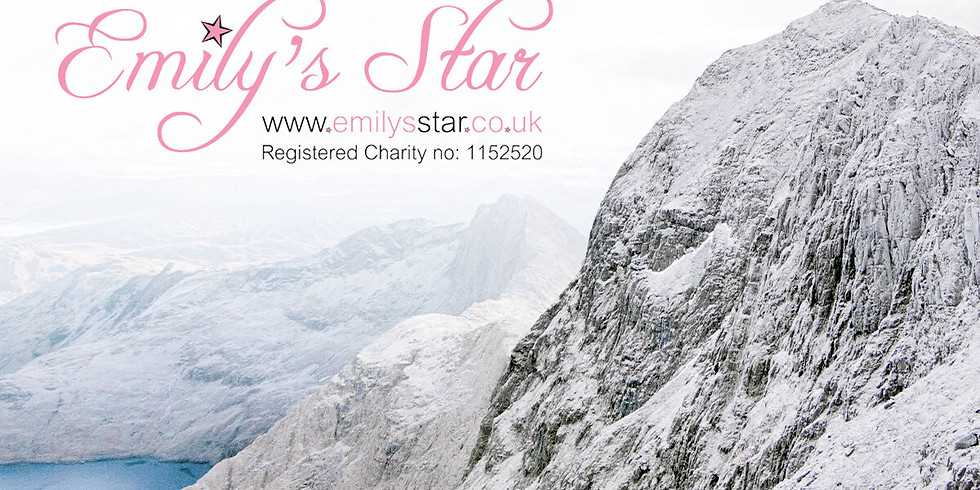 Focus IT Recruitment fundraises for Emily's Star