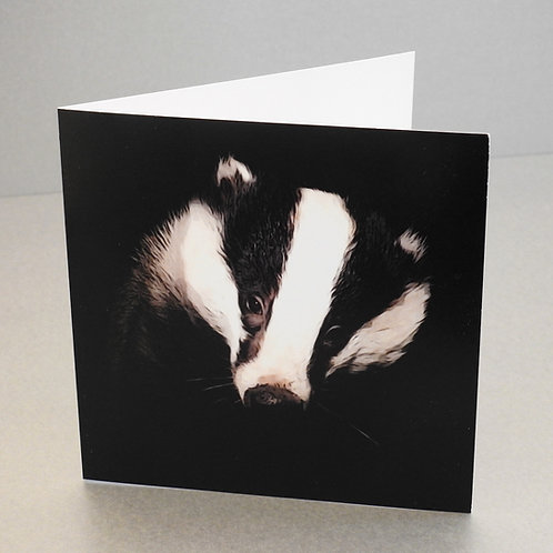 Mr Lumpy Iconic Cards (pack of 5)