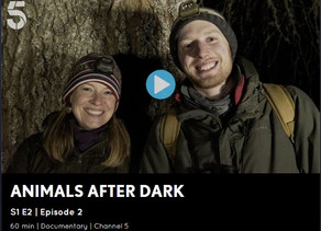 Mr Lumpy & Friends appear on Animals After Dark CH5 Series 1 Episode 2