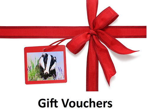 Mr Lumpy's Gift Voucher