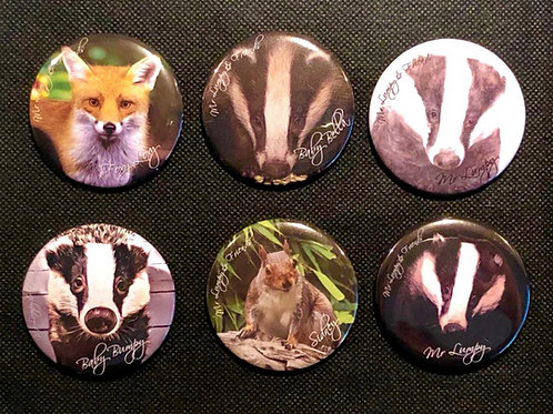 Fridge Magnets Various Characters