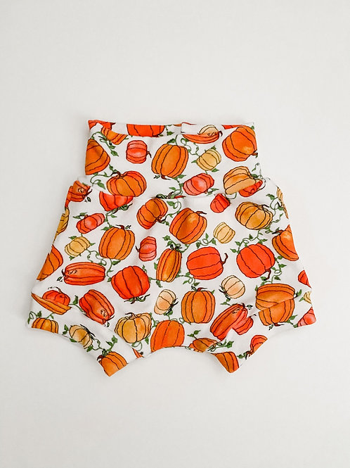 Pumpkin Harvest Shorties