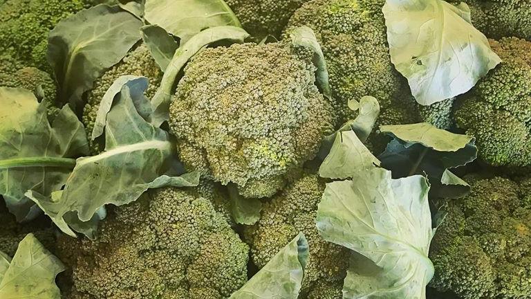 Organic Broccoli (300-350g)