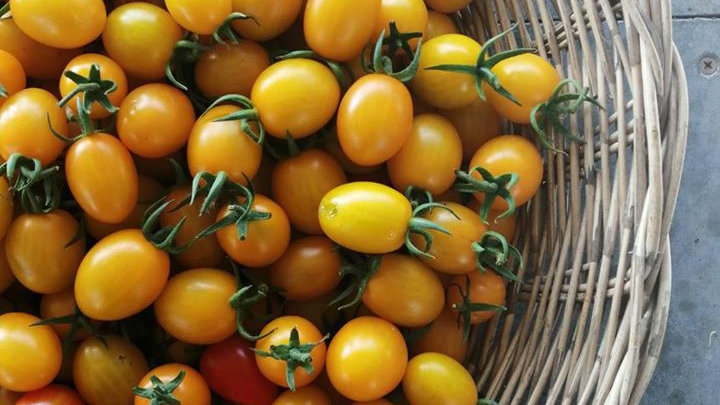 Organic Cherry tomatoes (200g)